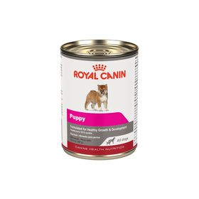 royal_canin_maskota_RC42055