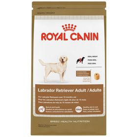 royal-canin-labrador-adult-1