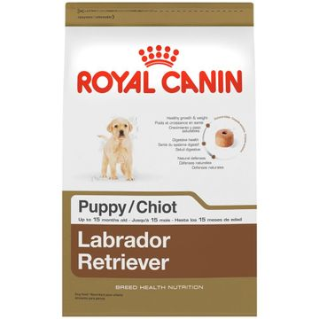 royal-canin-labrador-puppy-1