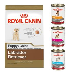 royal-canin-18
