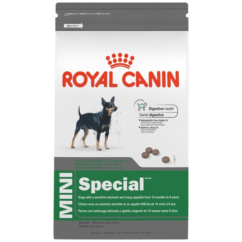 maskota-royal-canin-mini-special-1