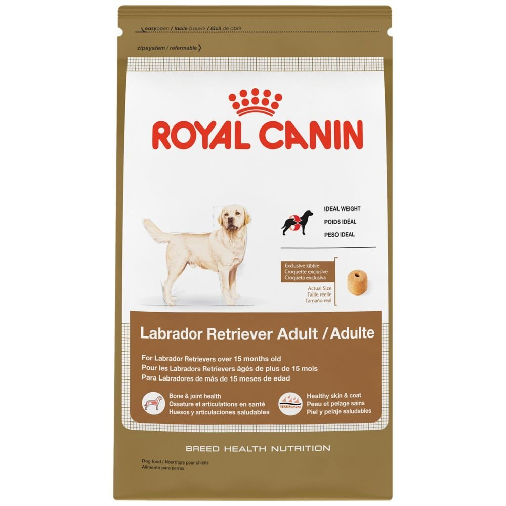 maskota-royal-canin-labrador-adult-1