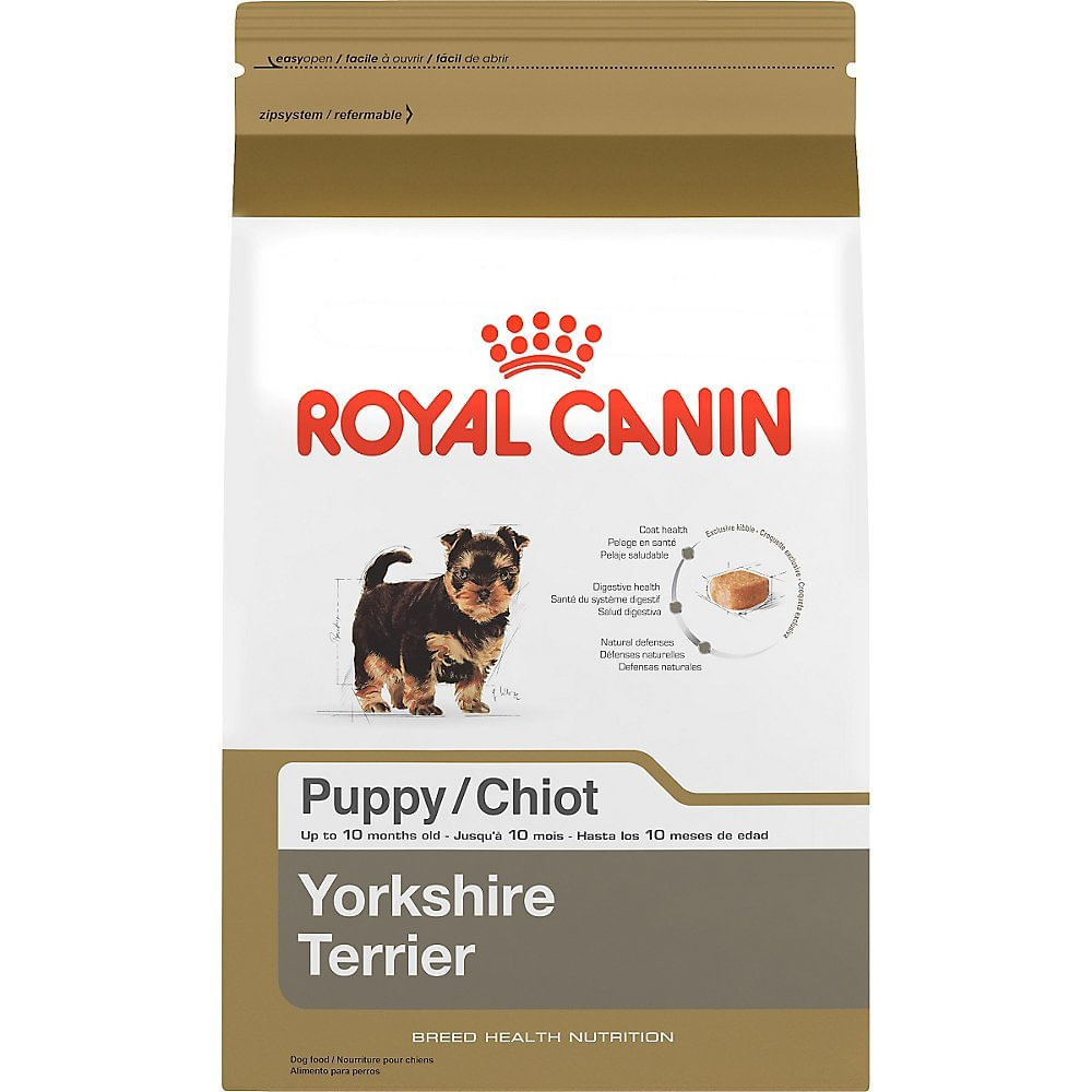 maskota-royal-canin-yorkshire-puppy